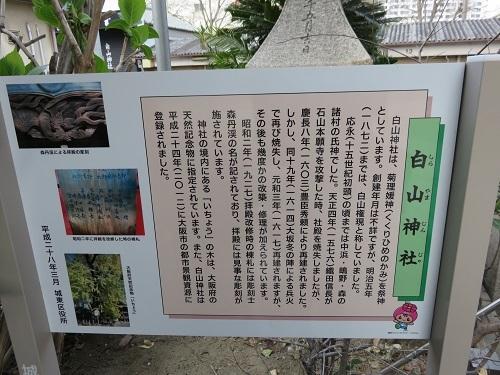 IMG_3381 白山神社