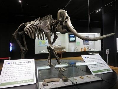IMG_4329 博物館