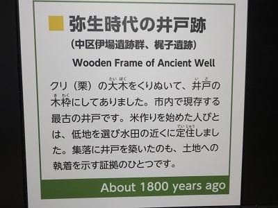 IMG_4335 井戸跡