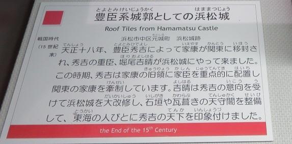 IMG_4363 浜松城