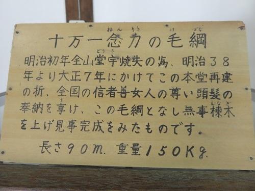 IMG_2018 毛綱
