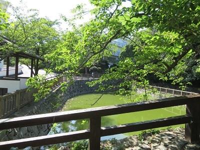 IMG_8675  田原城