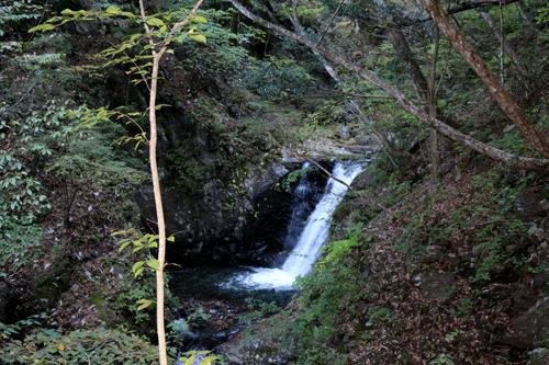20161103 板敷渓谷親子の滝 (2)