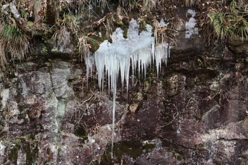 獅子滝付近の氷柱 (2)