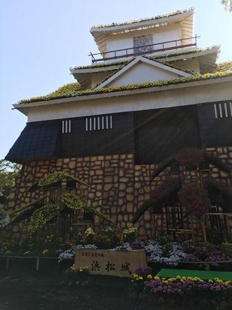 菊まつり浜松城
