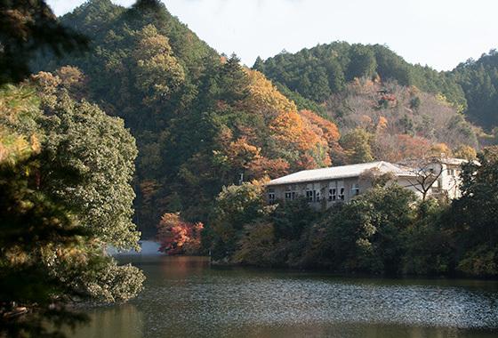 秘境湖IMG_3378