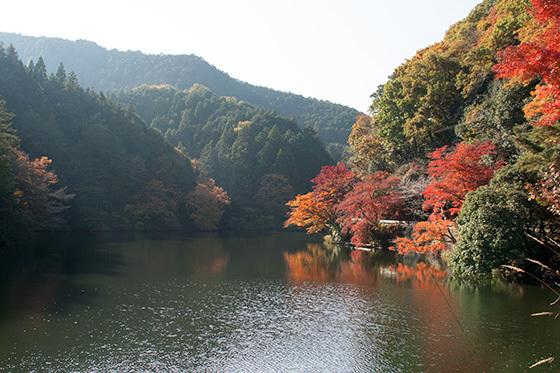 湖ノートりIMG_3404