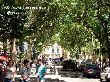 南仏の陽に木陰が濃いミラボー大通りの並木REVdownsize