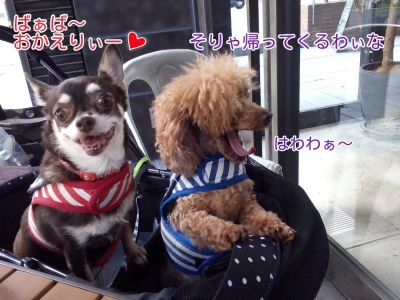 16-11-06-04-08-57-418_deco.jpg