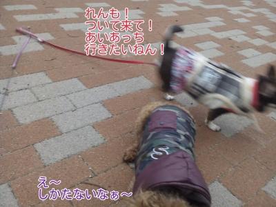 17-02-06-08-27-42-356_deco.jpg