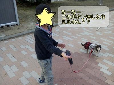 17-02-09-17-36-27-924_deco.jpg