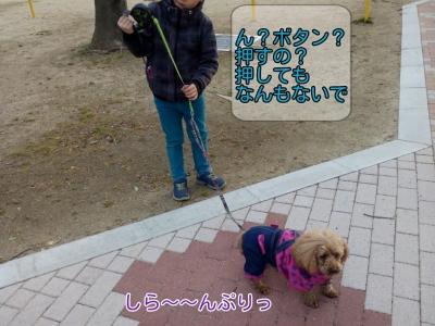 17-02-09-18-13-04-208_deco.jpg