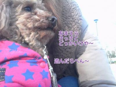 17-02-09-18-17-40-586_deco.jpg