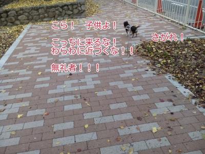 20161127082824a3b.jpg