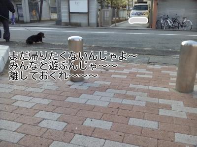 20170201230236ed9.jpg