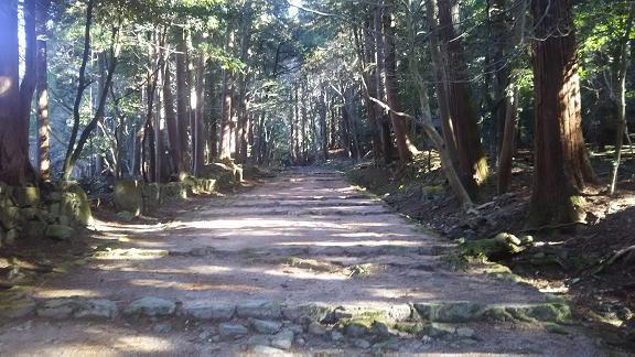 hyakusaizi8.jpg
