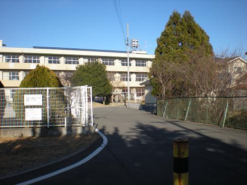 kouritori3.jpg