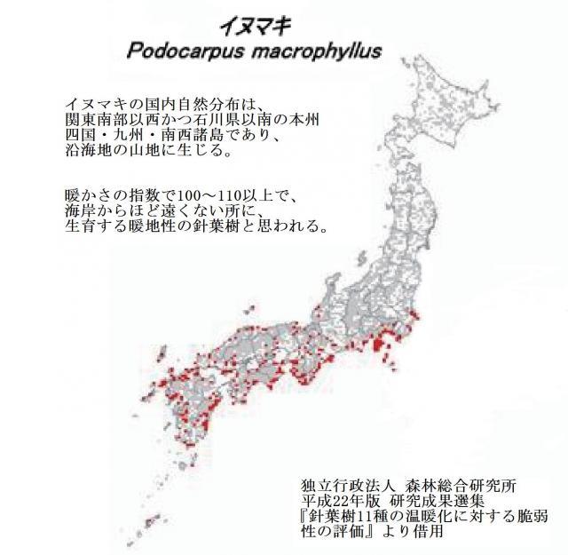 イヌマキの国内分布