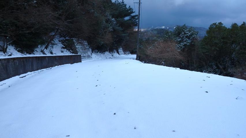 林道は一面の雪