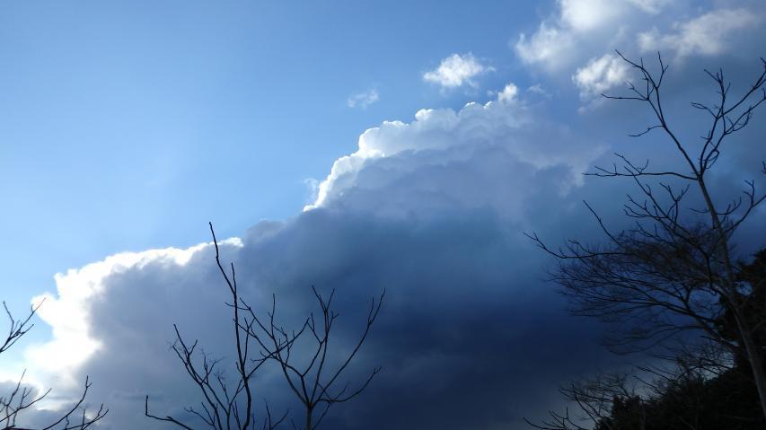 雄大積雲と呼ぶには少々貧弱だが‥‥