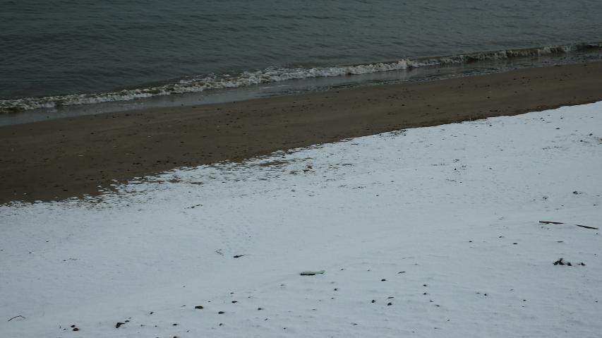 海岸の波打ち際に積もった雪