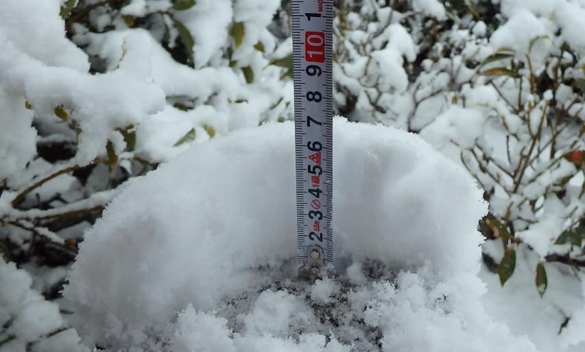 積雪は6センチだ