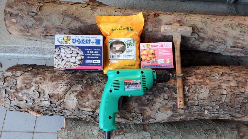 キノコの種駒と植菌の道具