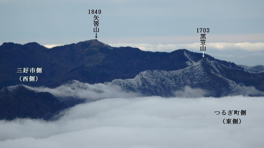 稜線の東側に霧氷が出来ている