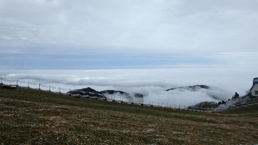 ミヤマクマザサの笹原から眺める雲海