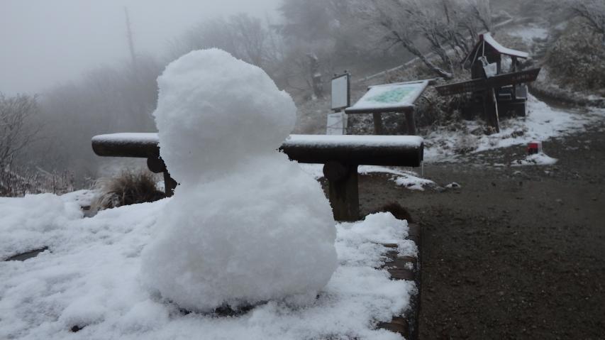 刀掛け松に誰がこしらえたのか雪だるま!