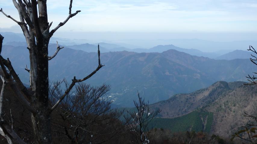 遠くに大川山