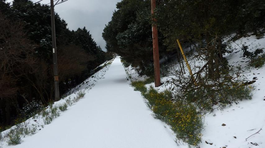 新雪を踏みしめて登ります