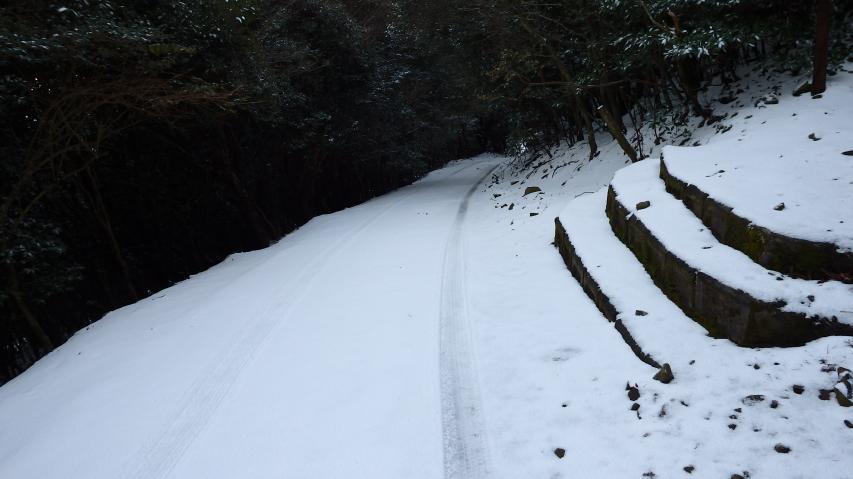 狭い道です