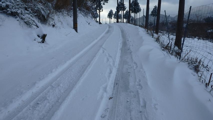 積雪は10―20cmのレベル