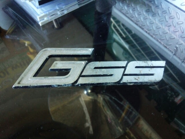 GSS01