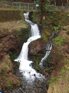 滝Lvの水量