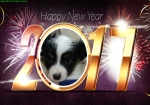 1483253065470Happy New Year PhotoFrames