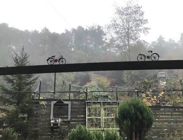 11,19外庭のゲート