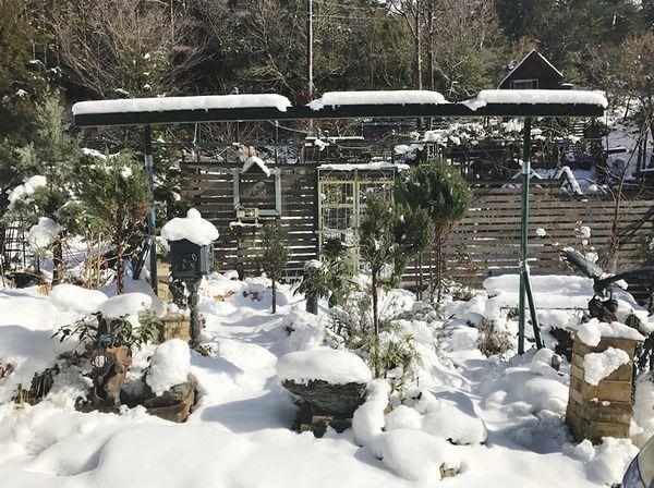 1,17雪の庭ー1