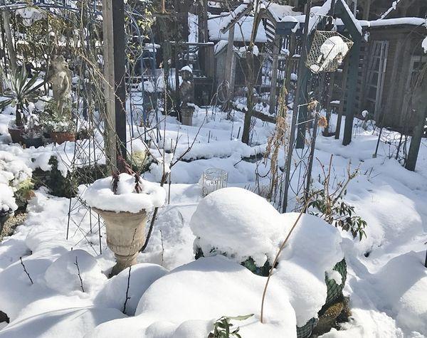 1,17雪の庭ー3