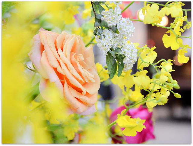 青森県 むつ市 式典 セレモニー オープニング 写真 撮影 出張 委託 派遣 店舗 店 カメラマン 全国 対応