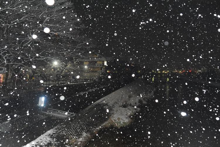 鴨川、夜明け前
