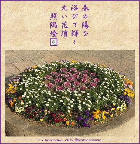 170214丸い花壇