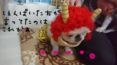 suzu2017 (2)