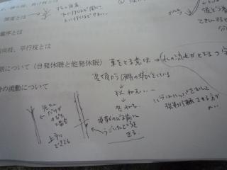 P1090078.jpg