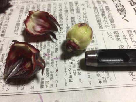 fc2blog_20161115090505eaa.jpg