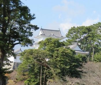 小田原城遠景