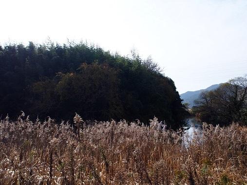淡路志知城跡2