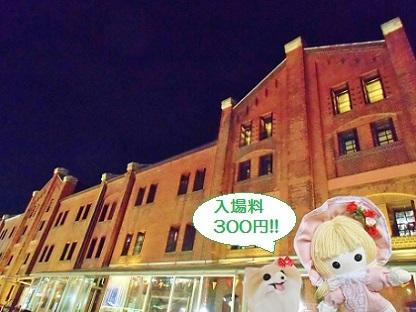 入場料が300円