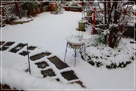 朝起きたら、雪国でした!
